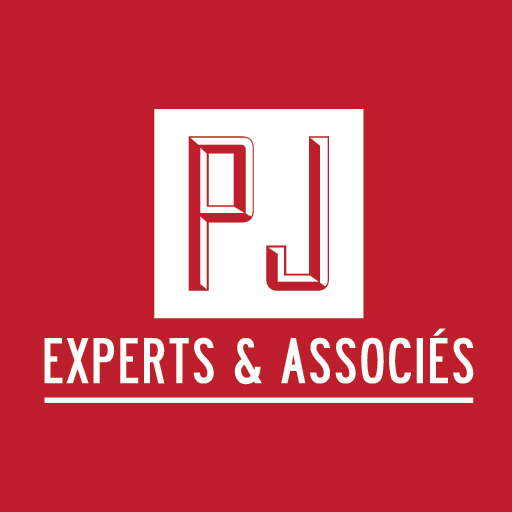 PJ Experts & Associés